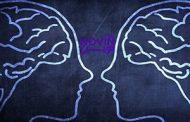 شخصیت منعطف (P) را چطور بشناسیم؟